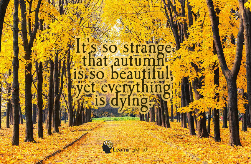 autumn is so beautiful