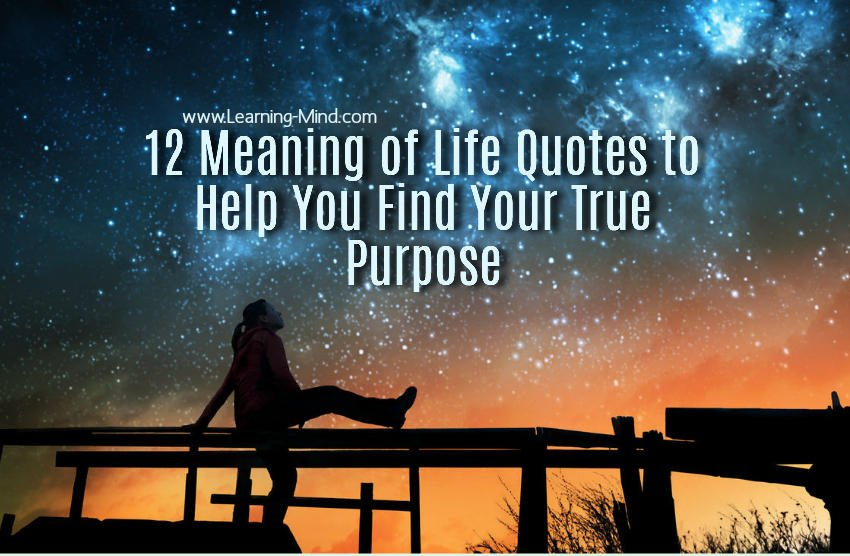 12 Meaning Of Life Quotes To Help You Find Your True Purpose U2013 Learning Mind