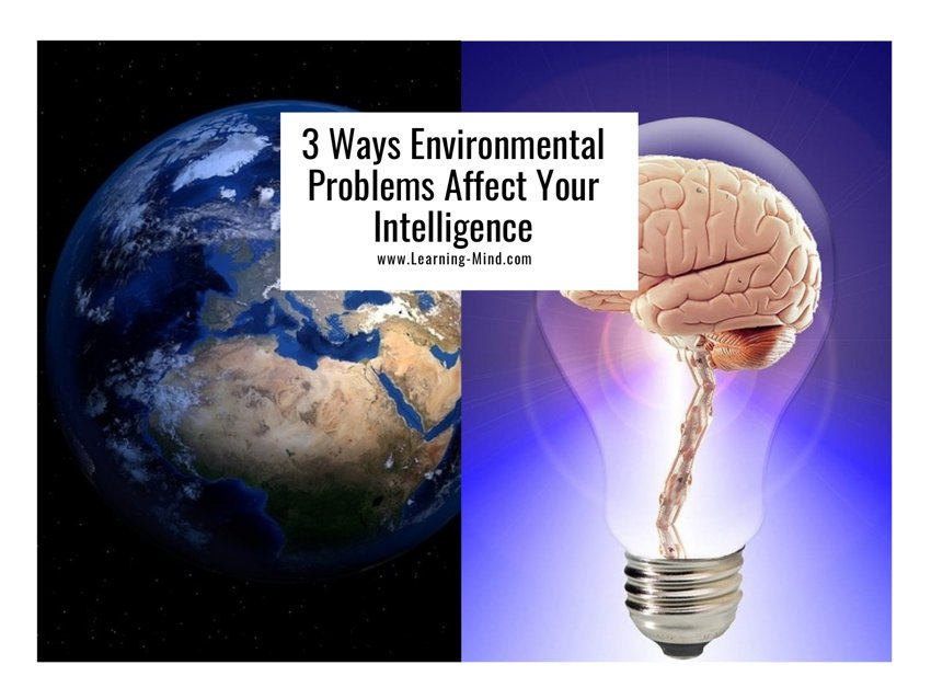 environmental problems intelligence