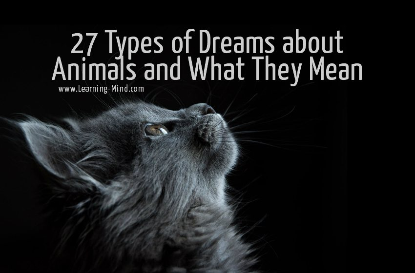 dreams about animals meaning