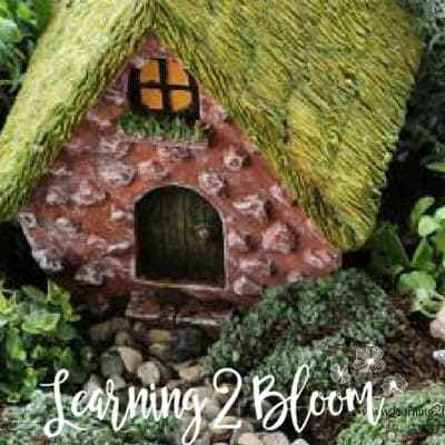 How to Create Your 1st DIY Fairy Garden