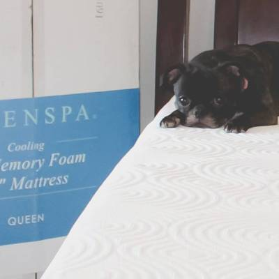 Linenspa gel memory foam mattress review