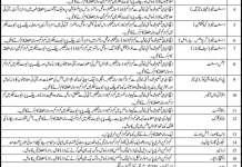 Task-Force-Secretariat-Sindh-Government-Jobs