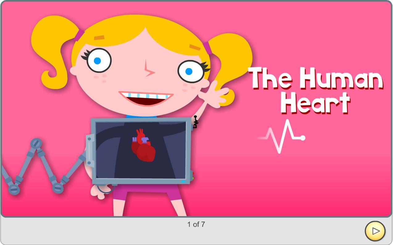 Preschool Science Learning Activity The Human Heart