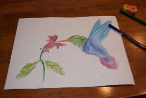Watercolour pencils www.learningmama.com