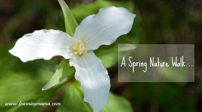 A Spring Nature Walk