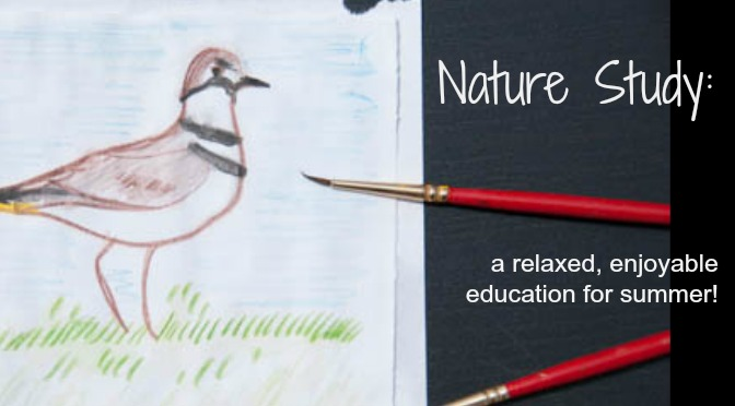 Nature Study: a relaxed, enjoyable education for summer!- how nature study can cover phys ed, science, language arts, and art!