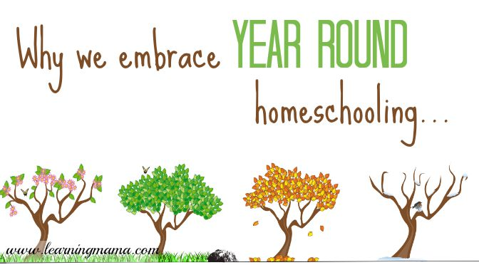 Why We Embrace Year Round Homeschooling