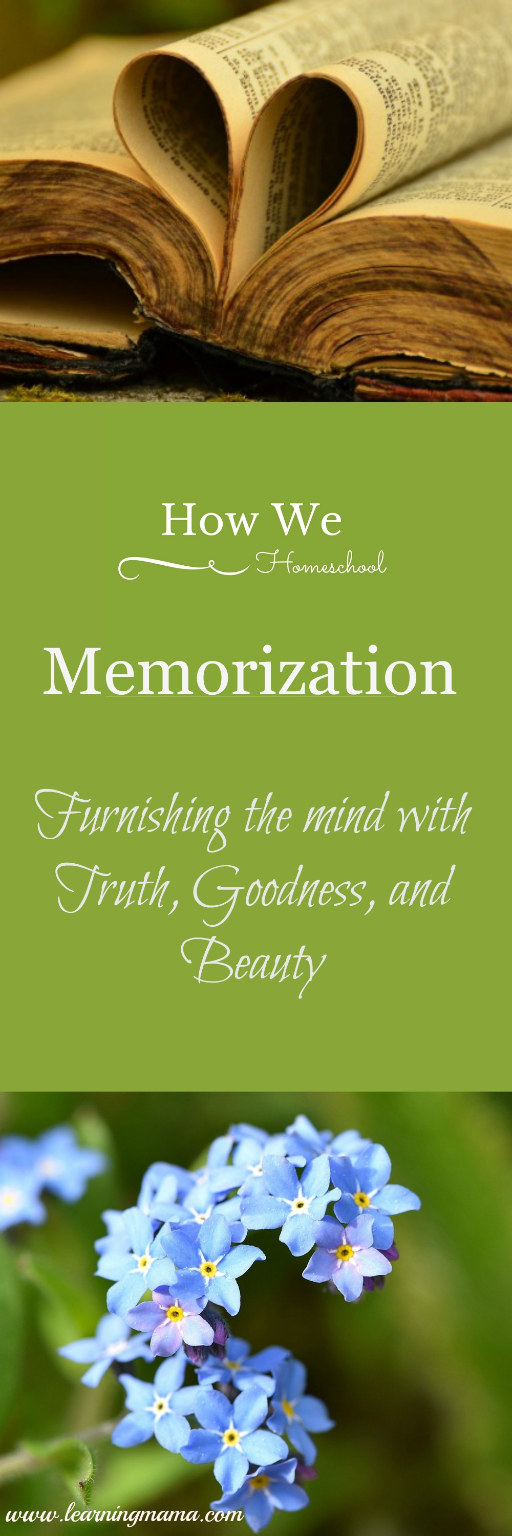 Memorization is NOT an antiquated or useless educational method! Memorization furnishes the mind with valuable ideas