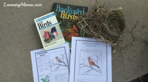 Our Backyard Birds notebooks - NotebookingPages.com Review