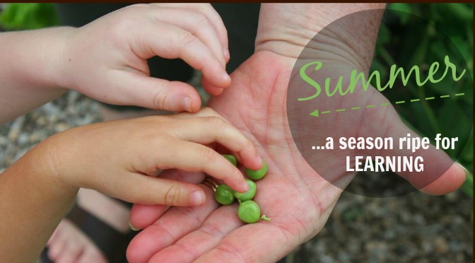 Summer: A Season Ripe with Learning!