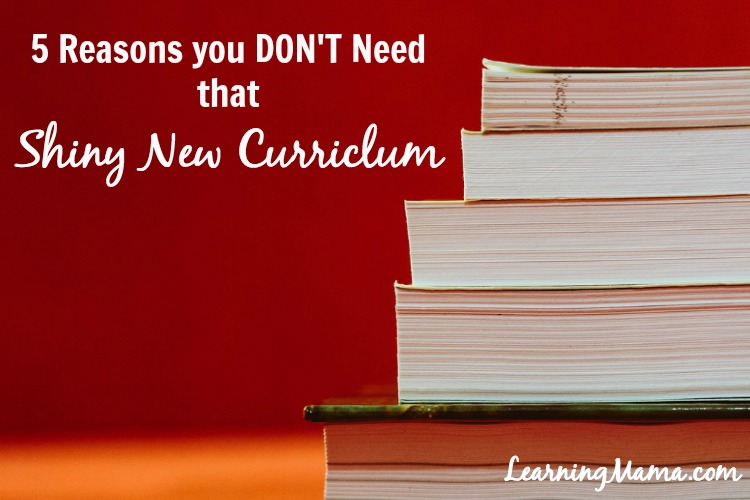 5 Reasons You Don't Need That Shiny New Curriculum
