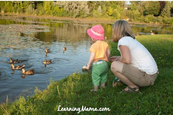 100 Things to do with your kids outside this summer - feed the ducks!