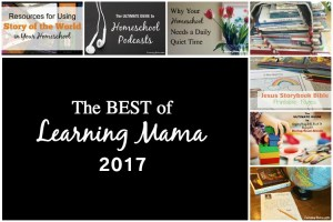 Best of Learning Mama 2017