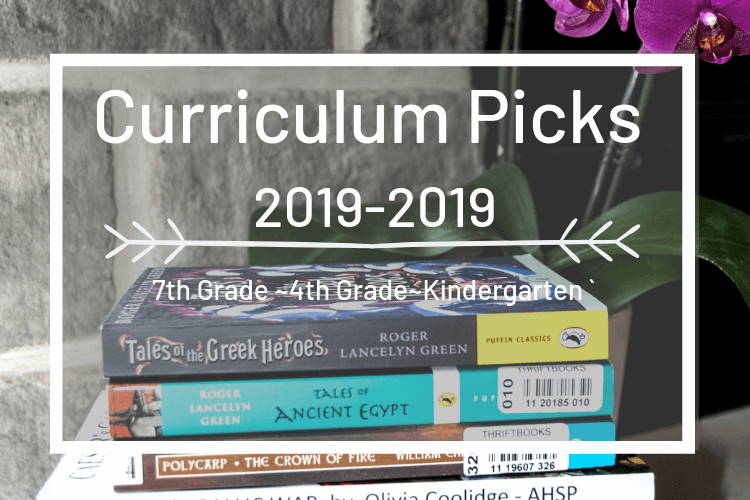 Our Relaxed Classical Homeschool Curriculum –2019/2020 Picks!
