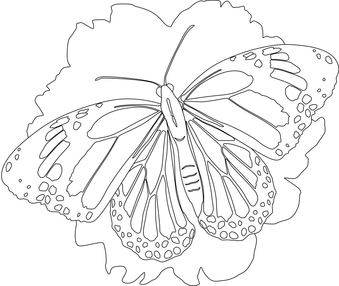 Book Butterfly Worksheet