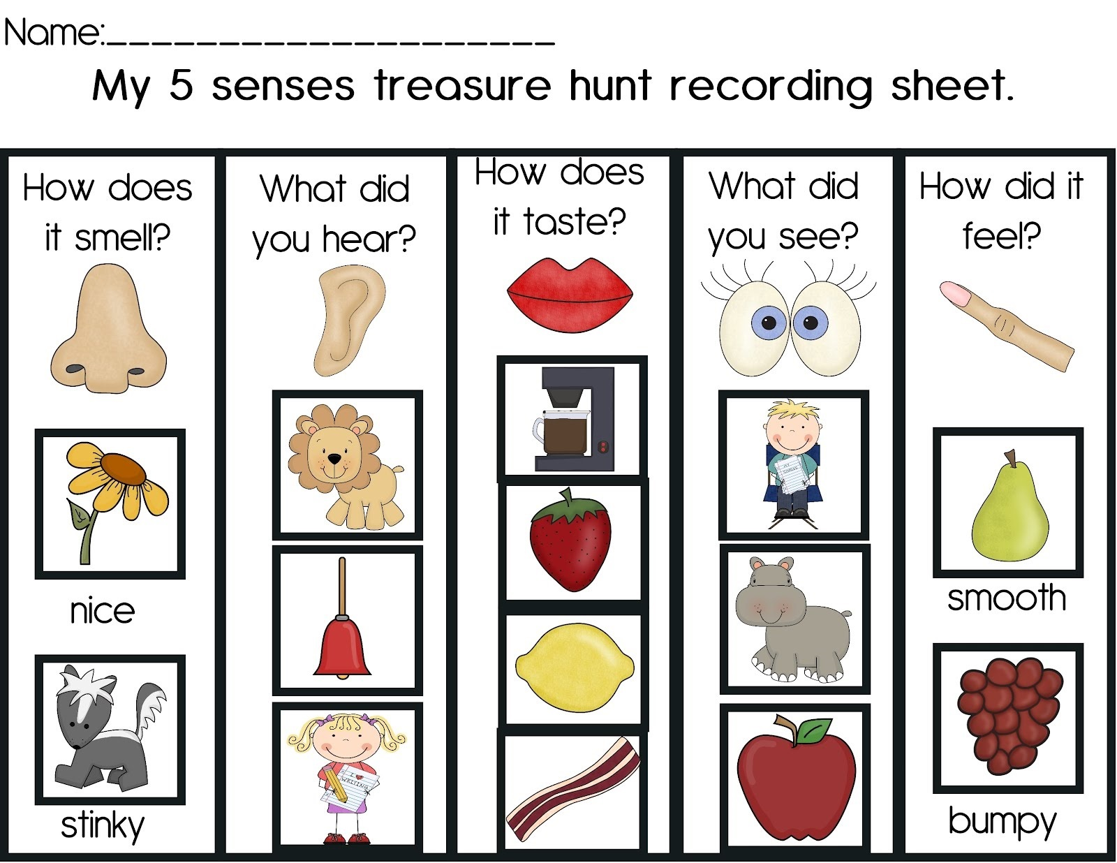 Activities For 5 Senses