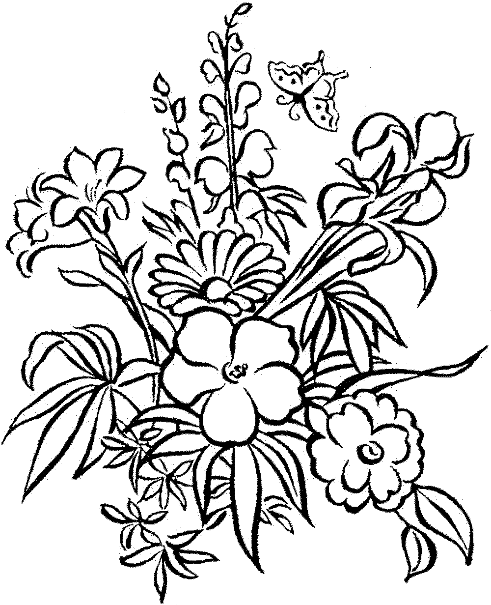 Coloring Pictures for Children Elementary & Teenagers