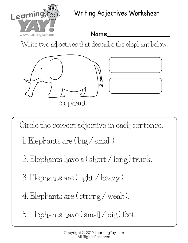 medium resolution of Writing Adjectives Worksheet for 1st Grade (Free Printable)