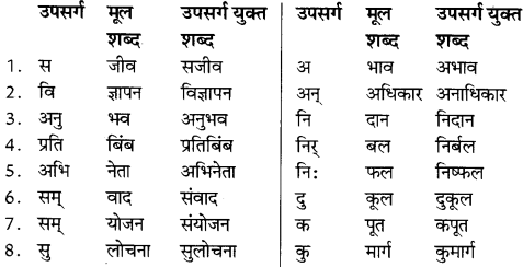 NCERT Solutions for Class 8 Hindi Vasant Chapter 11 3