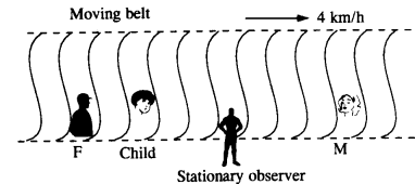 NCERT Solutions for Class 11 Physics Chapter 3 Motion in a Straight Line 27