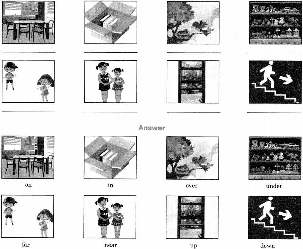 http://www.msrblog.com/study/preposition-exercise-for-class-6/index.html [ 837\u0026ssl\u003d1 x 837 Pixel ]