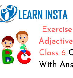 Exercise On Adjectives for Class 6 CBSE With Answers [ 720 x 1280 Pixel ]