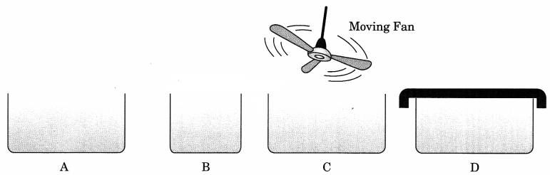 Matter in Our Surroundings Class 9 Extra Questions and Answers Science Chapter 1 img 5