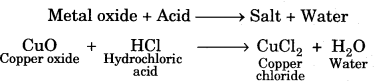 Acids Bases and Salts Class 10 Notes Science Chapter 2 4