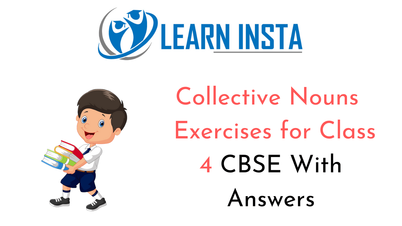 hight resolution of Collective Nouns Exercises for Class 4 CBSE with Answers