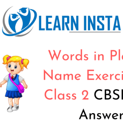 Words in Place of Name Worksheet Exercises for Class 2 Examples with  Answers CBSE [ 720 x 1280 Pixel ]