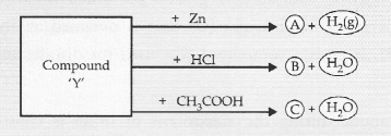 NCERT Exemplar Solutions for Class 10 Science Chapter 2