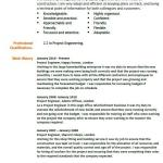 Project Engineer CV Example