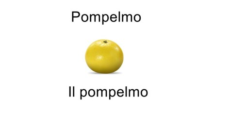 Names of fruits pompelmo