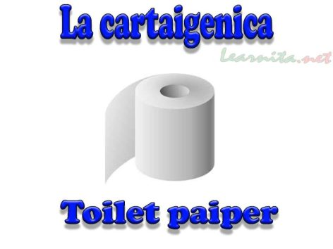 La cartaigenica - Toilet paiper in italian