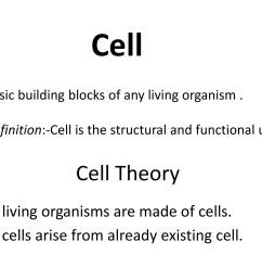 IGCSE Grade 6 Biology Cells And Organisation - PowerPoint Slides [ 2250 x 3000 Pixel ]