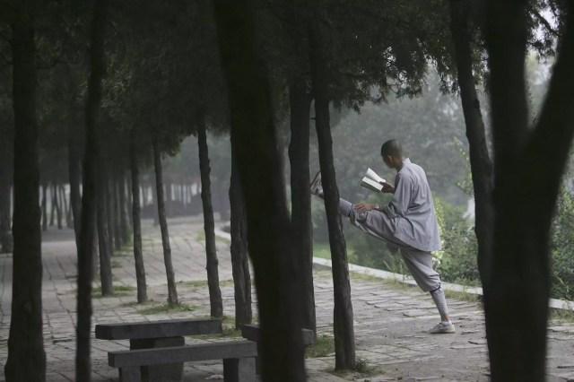 Shaolin Monk Lê Livro