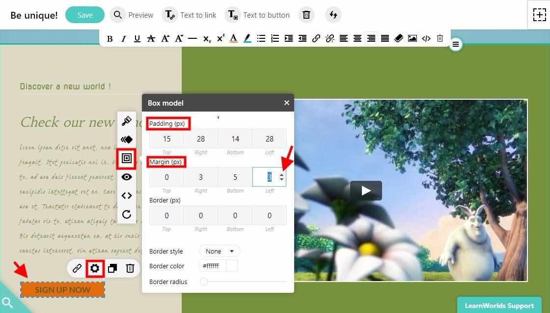 Border box in LearnWorlds elements