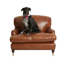 Leather Chairs Of Bath Three Seater Lansdown Canopy Folding Chair Snuggler Chelsea Design Quarter