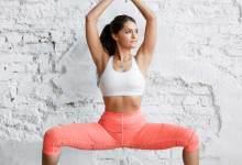 Inner Thigh Fat Workout