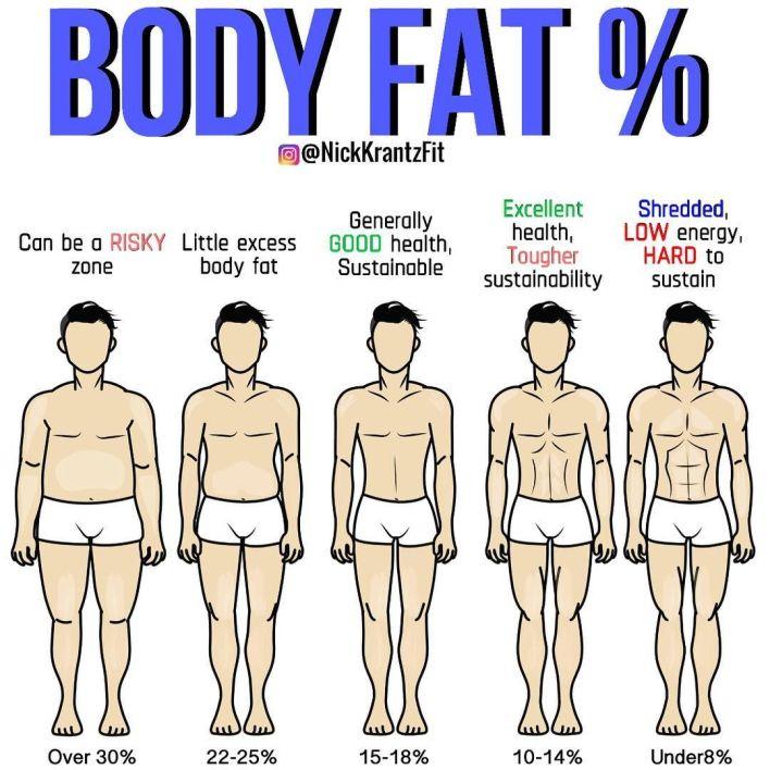 Lower Body Fat