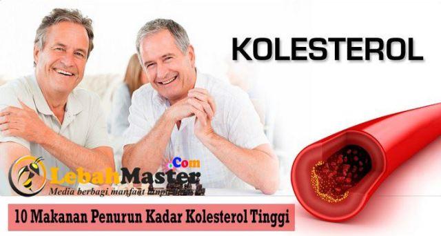 Penurun Kadar Kolesterol