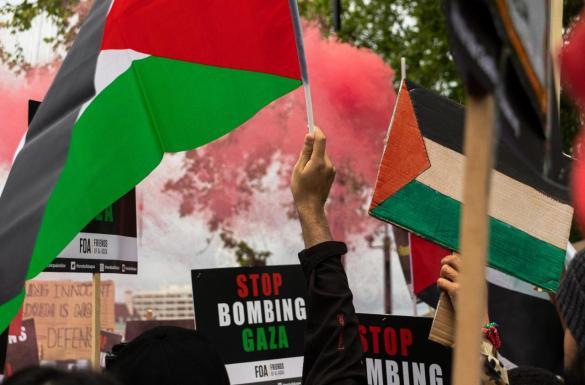 Israeli Crimes Against the Palestinians | Lebanon Law Review | Palestine Flag Demonstration