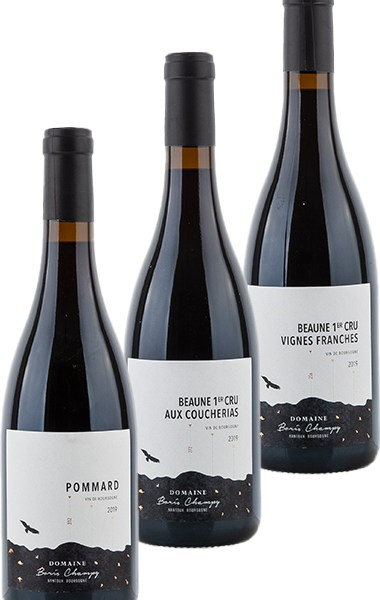 Boris Champy Côtes de Beaune 2019 tasting package - Tasting package