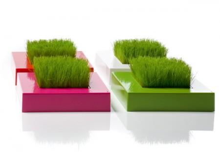 Carrés d'herbe design by Racine Carré