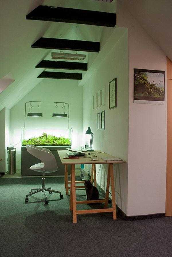 Appartement contemporain sous les combles  Bureau avec un aquarium