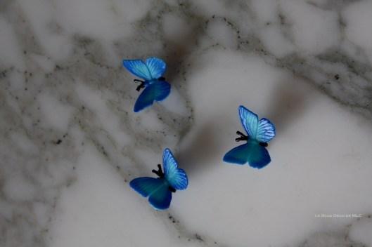 bleu-papillon-deco-végétale-MLC