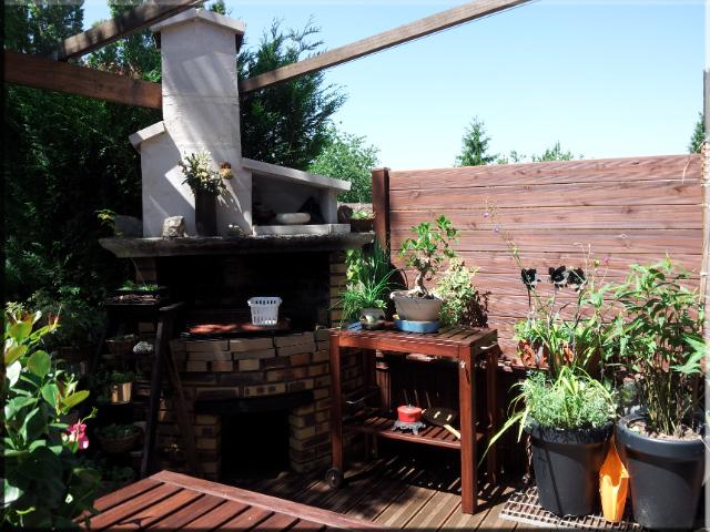 Terrasse en pin marron