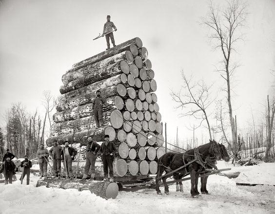 Retour dans le passé des métiers du bois