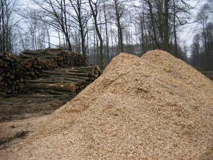 Tas de plaquettes forestières